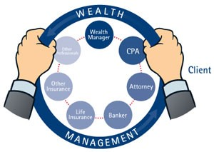 Wealth Management Process Wheel