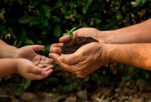 Teaching financial stewardship