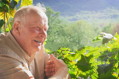 Vineyard Man